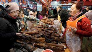 Wuhan: mercato del pesce